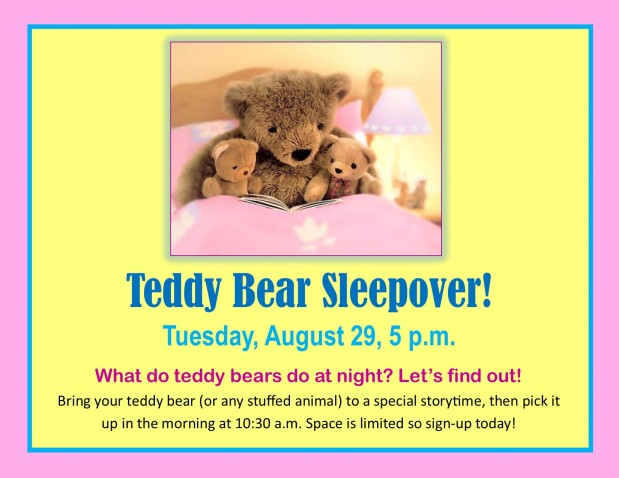 Teddy Bear Sleepover